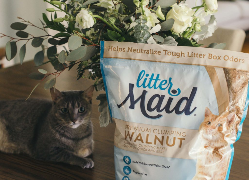 We wanted to eliminate chemicals from our kitties daily routine as well. We recently tried natural kitty litter and I have to say we are fans!