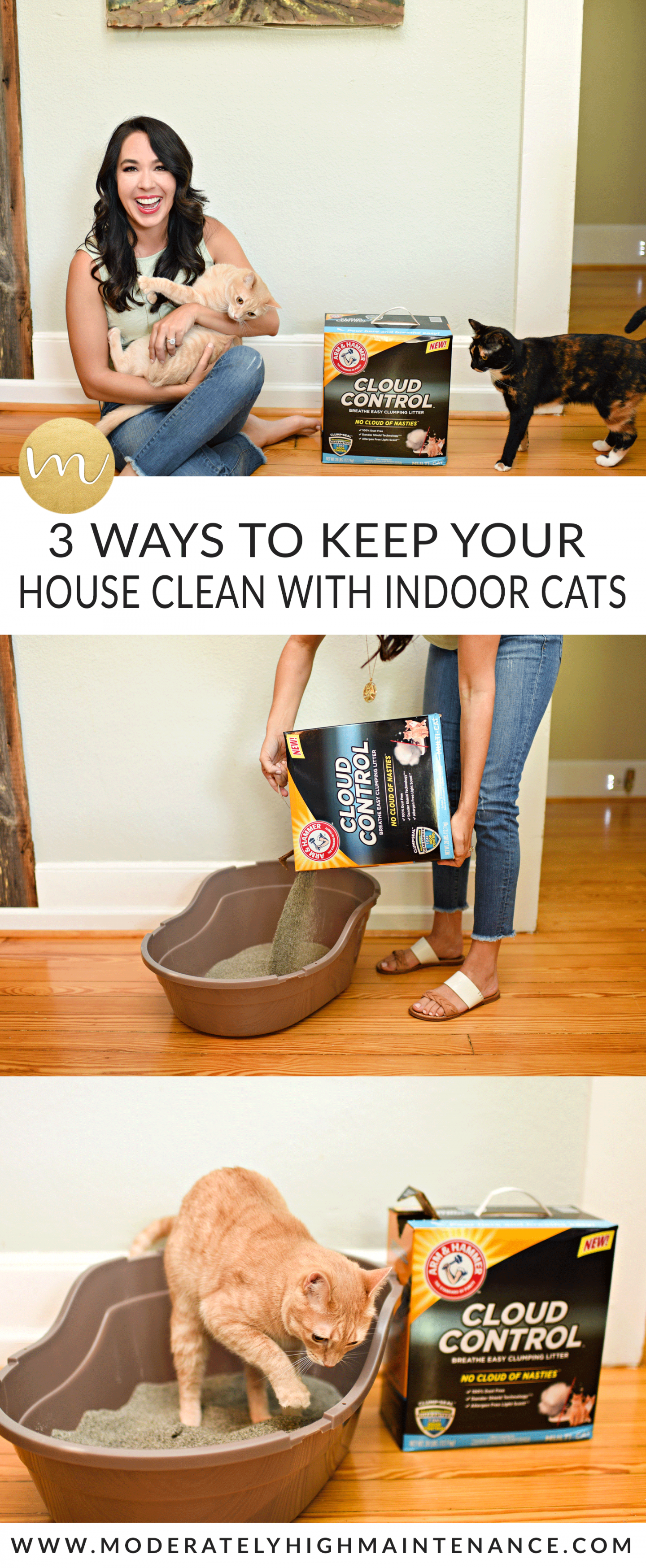 Living a cat's best life means a clean and smell-free environment, and that's why I'm excited to share three ways to keep your house clean with indoor cats.