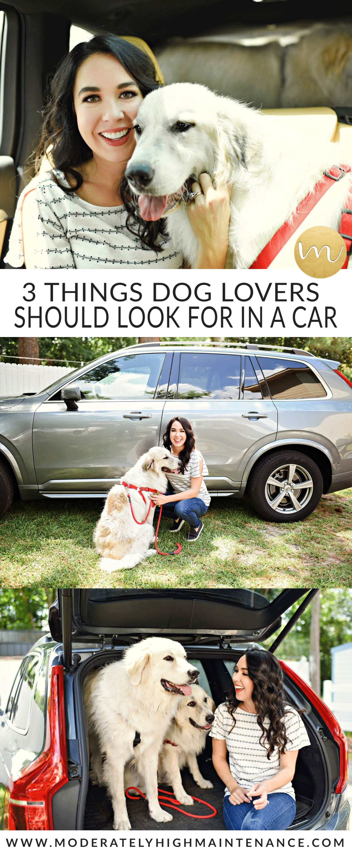3 Things Dog Lovers Should Look for in a Car! @Autotrader #AutotraderDogDay #dogsofinstagram #dogstagram #NationalDogDay