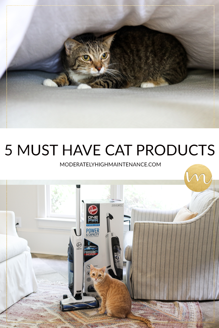 Five Must Have Cat Products