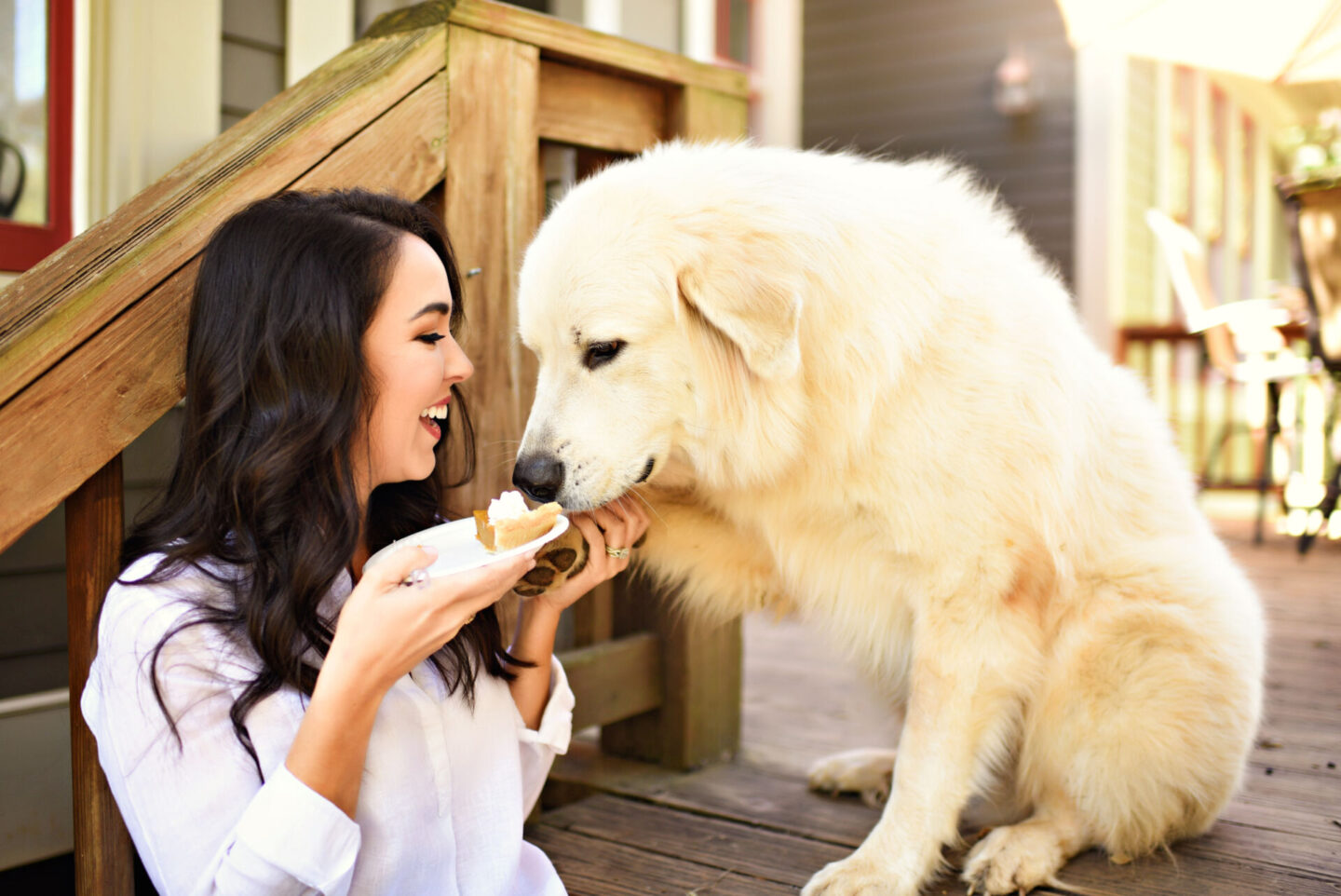Holiday Gift Guide: Top 10 Gifts for the Dog Lover