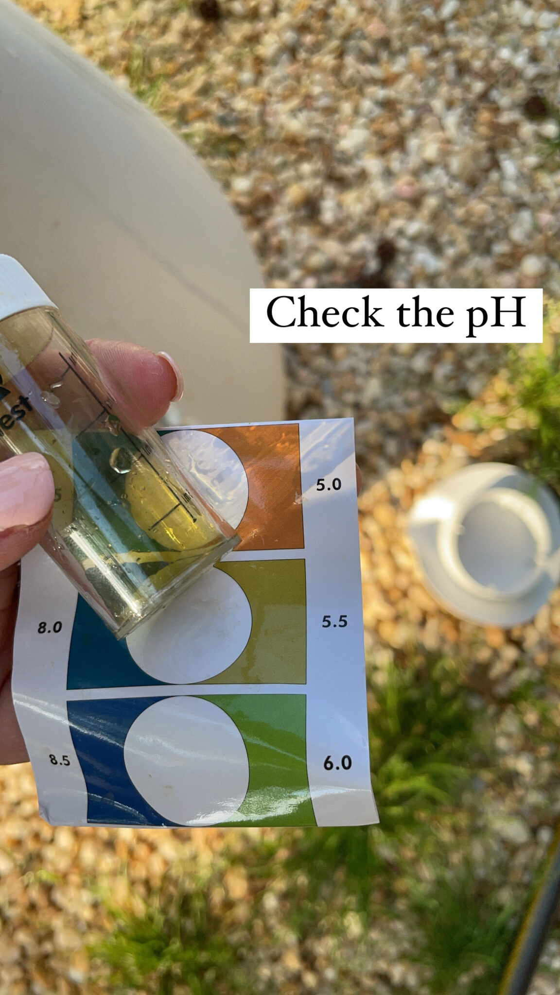easy hydroponic garden, featured by top Atlanta lifestyle blogger, Moderately High Maintenance | Hydroponic Garden by popular Atlanta lifestyle blog, Moderately High Maintenance: image of a woman checking the pH level of a water sample.