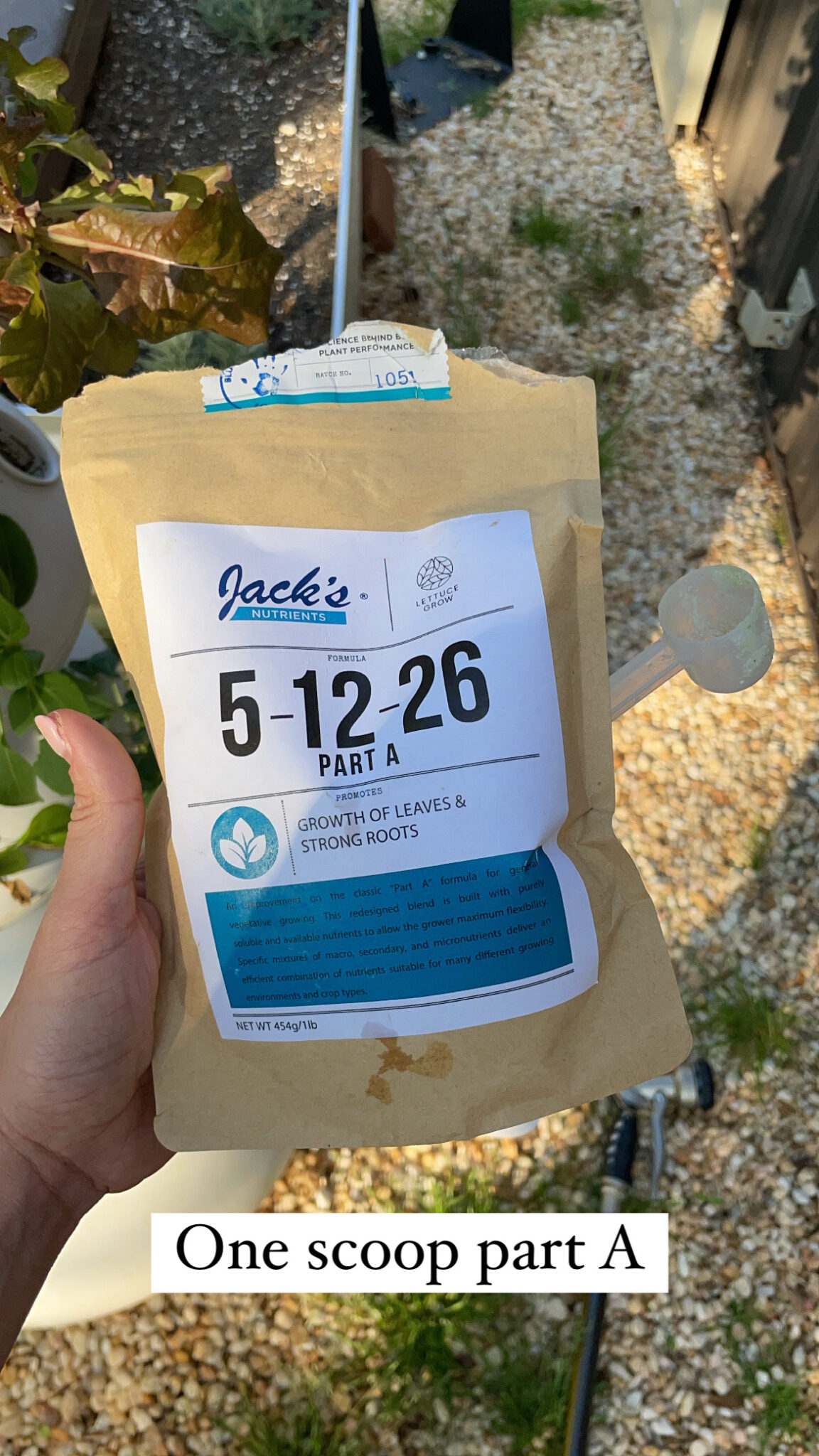 easy hydroponic garden, featured by top Atlanta lifestyle blogger, Moderately High Maintenance | Hydroponic Garden by popular Atlanta lifestyle blog, Moderately High Maintenance: image of a woman holding a bag of Jack's nutrients.